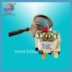 Dual probe bellows plug in thermostat